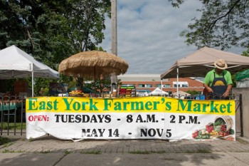 East York Farmer's Market