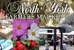 North York Farmer's Market