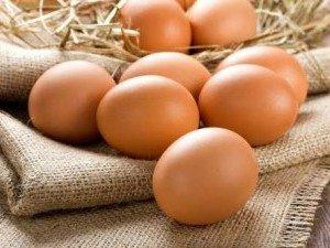 CSA Egg share