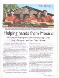 Helping Hands from Mexico Article