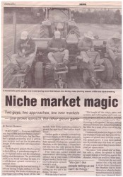 Niche Market Magic article