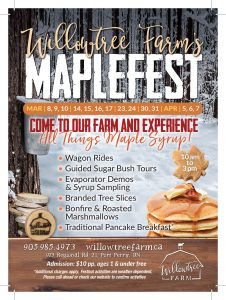 Maplefest Flyer